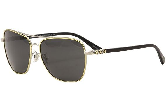 2dbf366ccb07b Amazon.com  Coach Women s HC7073B Sunglasses Gold Silver Black Dark ...