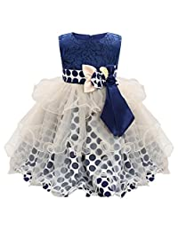 AmyDong Baby Toddler Girls Sleeveless Dress Wedding Party Pageant Birthday Tutu Dress