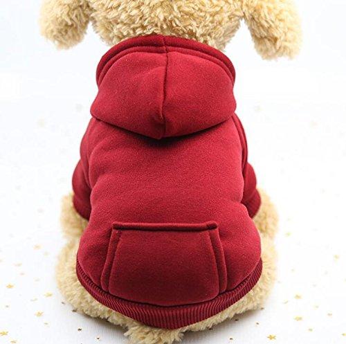 Znyo Ropa para Mascotas Jersey Deportivo con Sombrero Ropa de Perro cálida para Gatos XL