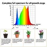 Aceple Full Spectrum Sunlike White LED Grow Light