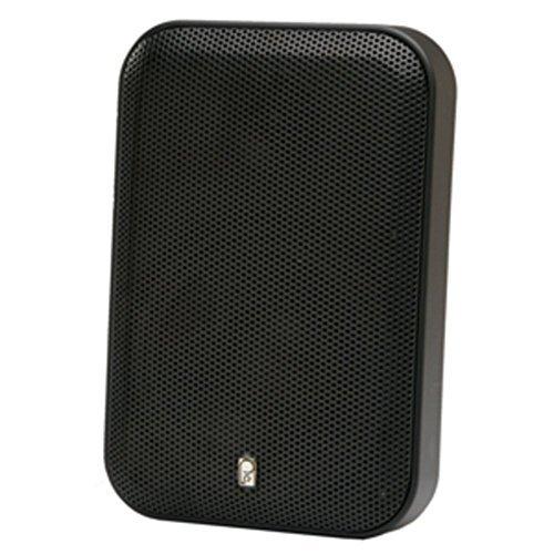 Poly-Planar Dual 400W Marine Platinum Panel Speakers Consumer Electronics (Poly Planar Dual Speaker)