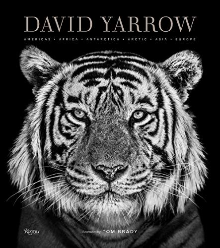 The must-have photography monograph of the year, this lavish oversized volume celebrates David Yarrow's unparalleled wildlife imagery.For more than two decades, legendary British photographer David Yarrow has been putting himself in harm's way to cap...