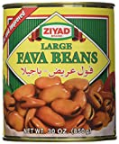 Ziyad Fava Beans, Large, 30 Ounce (Pack of 12)