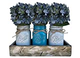 Mason Canning JARS in Wood Antique White Tray Centerpiece with 3 Ball Pint Jar – Kitchen Table Decor – Distressed Rustic – Flowers (Optional) – SOFT GRAY, TURQUOISE Blue Painted Jars (Pictured) Review