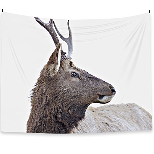Deer Tapestry Wall Hanging Blanket Poster 59''x78.7'', Fabric Cloth Home Decor Modern Nordic Style