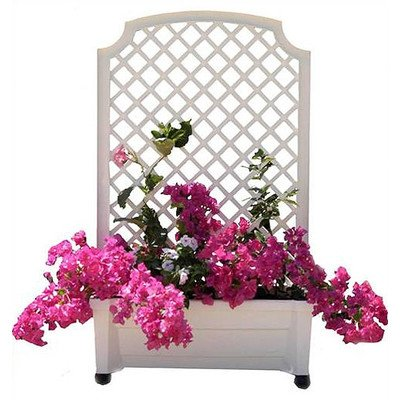 Rectangular Planter Box Color: -