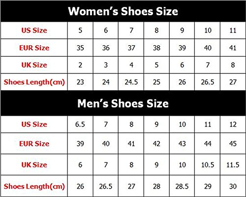 Bigcardesigns Money Design Lovely Cat Mujeres Running Zapatos Lace Up Sneakers Cat3