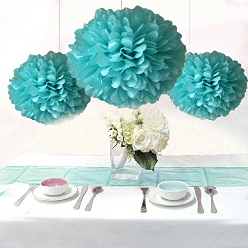 Saitec 12PCS Robin Egg Blue Party Tissue Pom Poms Wedding Flowers Birthday Anniversary Paper Hanging Decoration