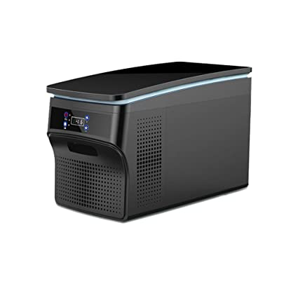 Amazon.es: WYJW Refrigerador del automóvil 26L compresor del ...