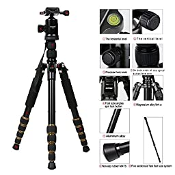 ZOMEI Z699 Magnesium Aluminum Alloy Travel Camera Tripod with Ball Head for Canon,Sony ,DSLR