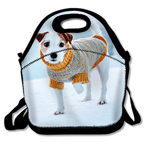 (Bjiansoah Winter Berries Dog Picnic Lunch Bag School Cooler Bag for Men Women)