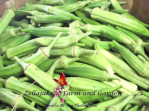 Okra Clemson Spineless Top Quality Easy Heirloom 2 pound seed by Unknown