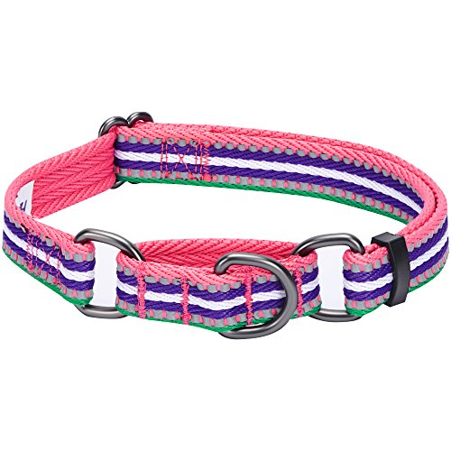 Blueberry Pet 8 Colors 3M Reflective Multi-Colored Stripe Safety Training Martingale Dog Collar, Pink Emerald and Orchid, Large, Heavy Duty Adjustable Collars for Dogs