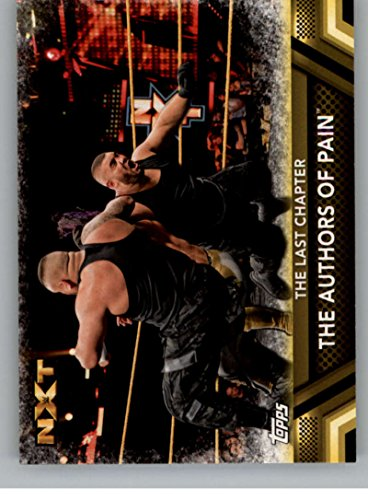 2017 Topps WWE Then Now Forever Finishers and Signature Moves #F-46 The Authors of Pain The Last Cha Last Chaos