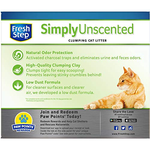 Buy unscented cat litter for odor control