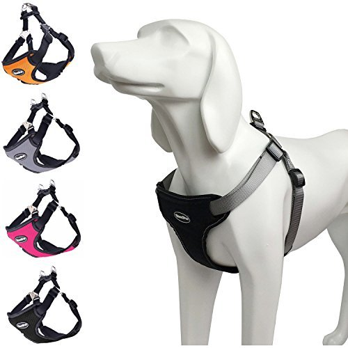 BINGPET No Pull Dog Harness Reflective for Pet Puppy Freedom Walking Medium Black