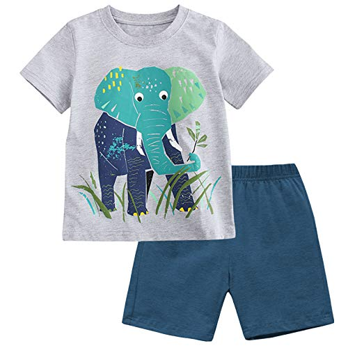 Fiream Boy's Cotton Clothing Sets T-Shirt&Shorts 2 Packs