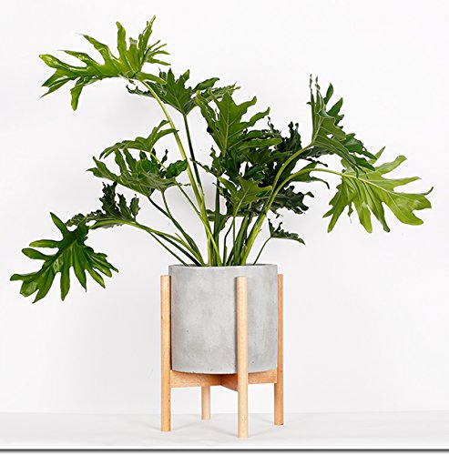 - RISEON Mid Century Modern Plant Stand, Wood Indoor Flower Pot Holder Display Potted Rack Rustic,Large Wooden Floor Planter Stand (Planter Not Included) (Large, Natural)