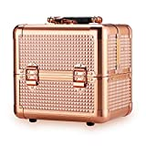 Ovonni Professional Portable Small Makeup Train Case, Artist Lockable Aluminum Cosmetic Organizer Storage Box with Compartments (Rosegold 2)