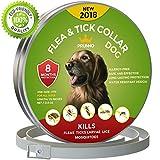 Dog Flea Treatment Collar - NEW 2018 Dog Flea Collar 8 Months Protection Hypoallergenic Waterproof Tick Collar for Dogs - Adjustable Flea and Tick Prevention for Dogs - Natural Dog Flea and Tick Control