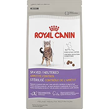royal canin feline health nutrition kitten spayed neutered dry cat food 2 5 pound. Black Bedroom Furniture Sets. Home Design Ideas