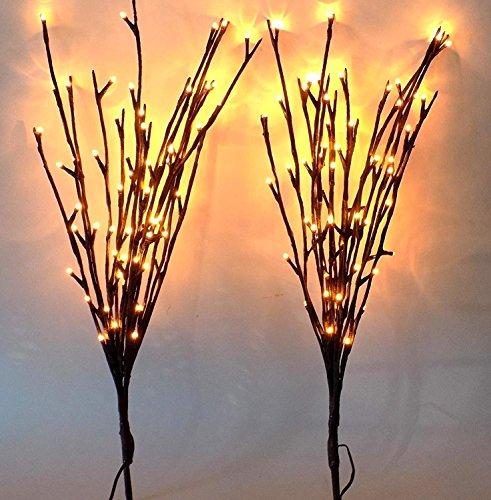 The Light Garden Willow in Florida - 7