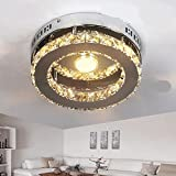 Ceiling Lights stainless steel crystal double color segmented LED aisle windows and balconies small bedroom LU816323 lo11 ( Size : White light )