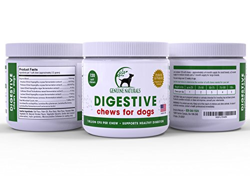 Digestive Supplement for Dogs top