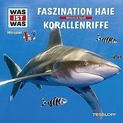 Faszination Haie / Korallenriffe (Was ist Was 3)
