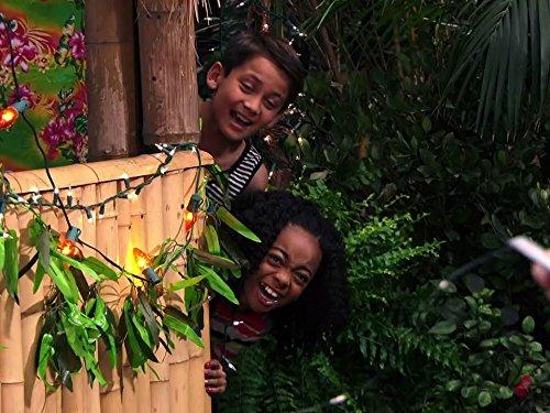 Jessie's Aloha Holidays with Parker and Joey (Jessie)
