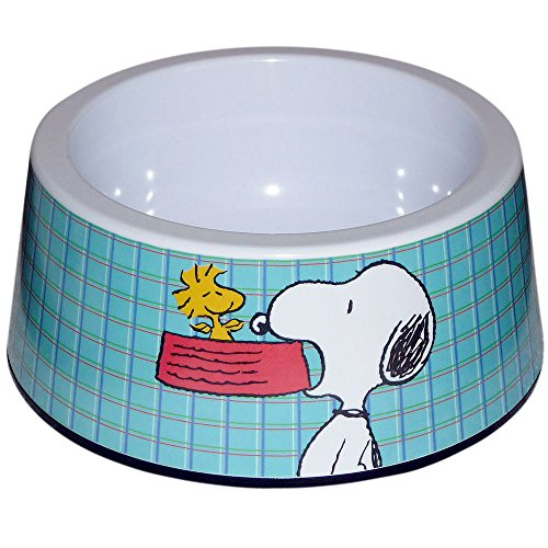 Peanuts Blue Checked Snoopy Food product image