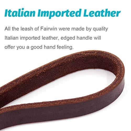 Fairwin Braided Leather Dog Leash