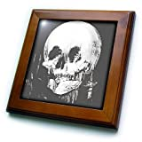 3dRose ft_46711_1 All Is Vanity-ghost, Halloween, optical illusion, paranormal, seasonal, silhouette, skeleton-Framed Tile, 8 by 8''
