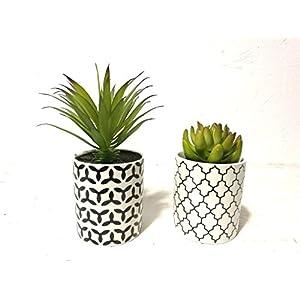 Pretty Home Potted Artificial Succulent Plants, Tile Pattern Pots 32