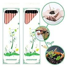 CAILLU Sprout Pencil-Pencil Plant Set of 16 pcs Sprout and Grow: Sprouting Pencil Plant - A Pencil That Can Grow Into a Plant