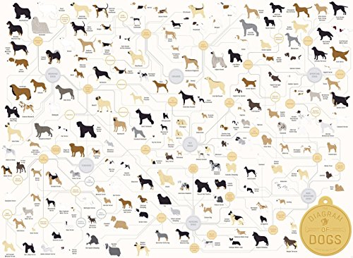Cute Dog Breeds Fabric Cloth Rolled Wall Poster Print -- Size: (32