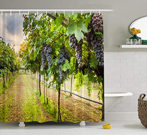 Bathroom Shower Curtain Grape Harvest Grape Valley Vineyard Wine Harvest Winery California Vine Country Waterproof and Mildew Resistant Fabric Shower Curtain Sets with 12 Hooks-72 x 72 inches ()