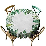 interesting tuscan outdoor kitchen style Wendell Joshua Black Tablecloth 70 inch Plant,Interesting Jungle Themed Picture with Leaves and an Opening to The Sky Exotic Art,Fern Green Great for Buffet Table, Parties, Holiday Dinner & More