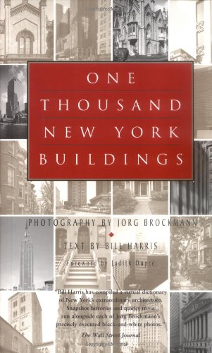 Read Online One Thousand New York Buildings pdf epub