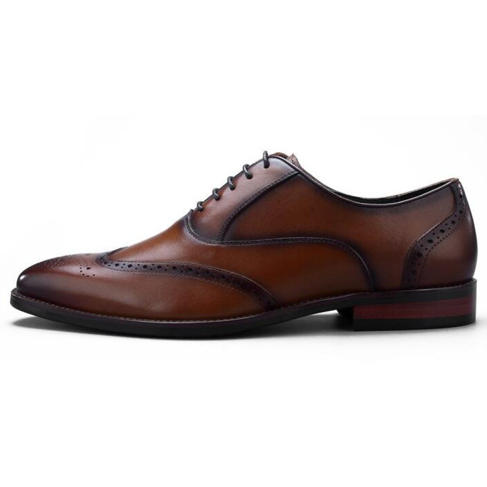 XIAOLONGY Zapatos De Verano De Inglaterra Hombres Brock Zapatos De Vestir De Vestir De Encaje De Cuero Tallado De Los Hombres,Brown-40 brown