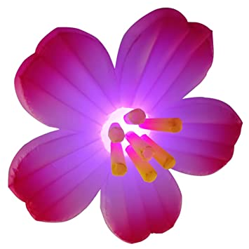 Amazon.com: Sayok - Decoración de flores de ciruela ...