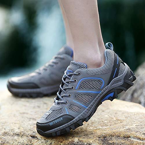 Casuales Cordones Mujer Zapatos Arriba para Malla De para C Mujeres Soles xwY1r1Xtq