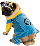 Rubie's Despicable Me Minion Pet Costume, X-Large