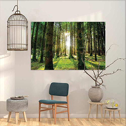 Oncegod Oil Painting Modern Wall Art Posters Sticker Forest Scenic Scenery with Sunbeams in The Forest Sunny Summer Day Morning View Picture Modern Decorative Artwork Green White W47 xL31