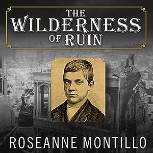 The Wilderness of Ruin Audiobook