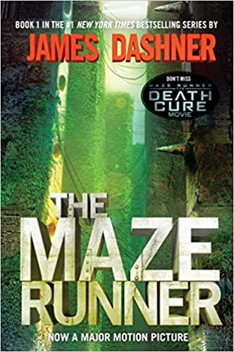 Image result for the maze runner book