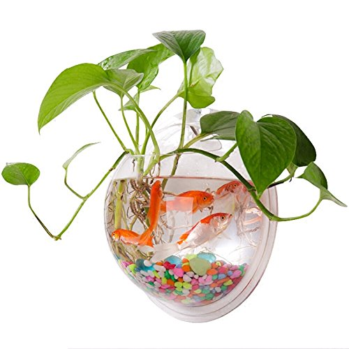 Yooyoo Creative Acrylic Hanging Wall Mount Fish Tank Bowl Vase Aquarium Plant Pot Bowl Bubble Aquarium Decor (11.6 (Round Goldfish Bowl)