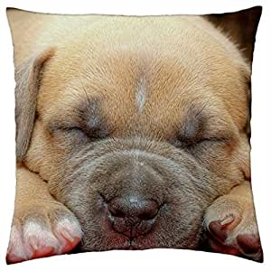 Beautiful Lights - Throw Pillow Cover Case (18