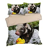 Awesome Piggy Yellow Duck Cotton Microfiber 3pc 80''x90'' Bedding Quilt Duvet Cover Sets 2 Pillow Cases Full Size