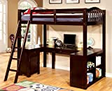 Furniture of America Lavinia Twin Loft Bed with Workstation, Dark Walnut